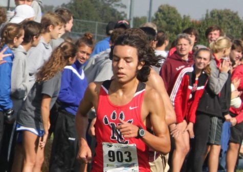 Cross Country Runner Places at State Meet