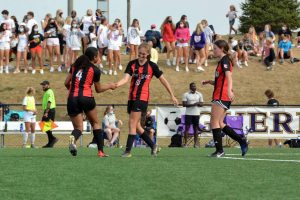 Girls soccer comes up short in sectional championship